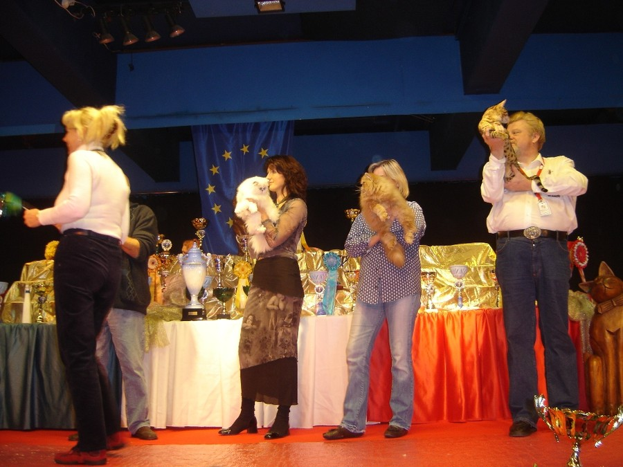 expo forbach 12 11 06 angie best suprme